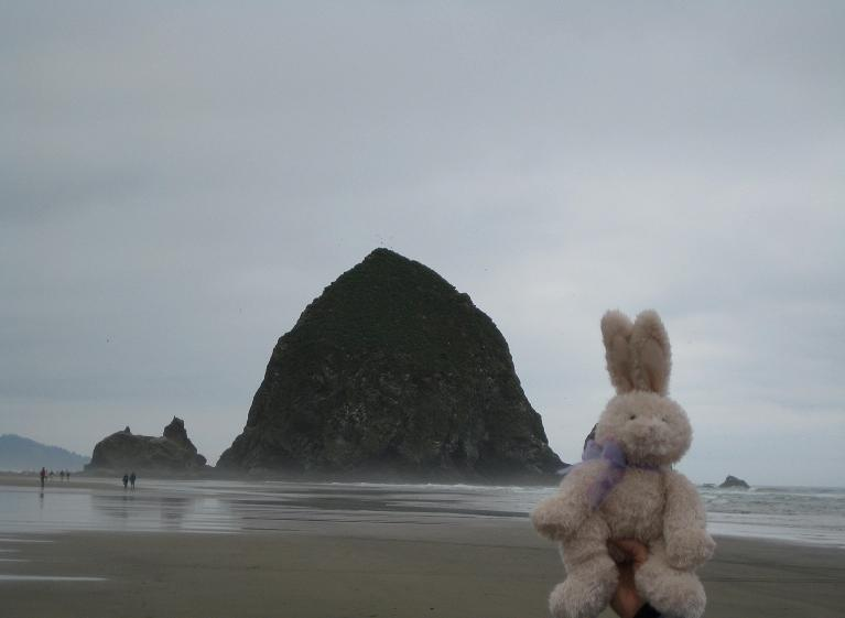 Bunny_Cannon Beach_small.JPG