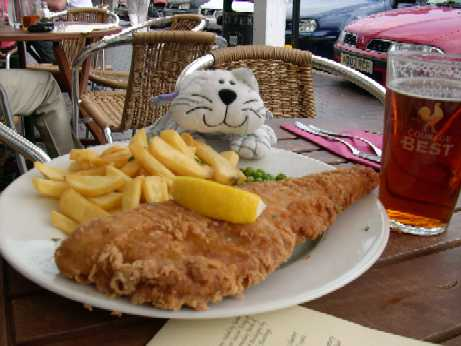 Medium - Westerham - PG with Fish & Chips.JPG
