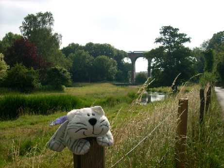 Medium - Eynsford Viaduct - PG 1.JPG